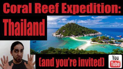 Coral Reef Expedition: Thailand (and you're invited!)
