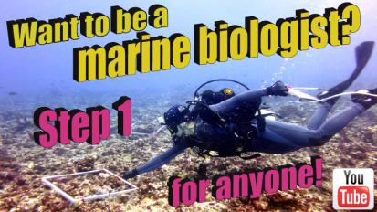 Want to be a marine biologist? Step 1 foranyone