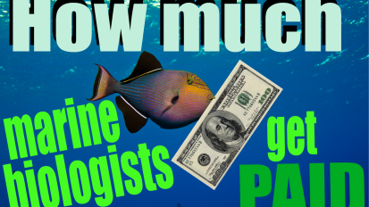 How much marine biologists getPAID