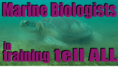 Marine biologists in training tell ALL