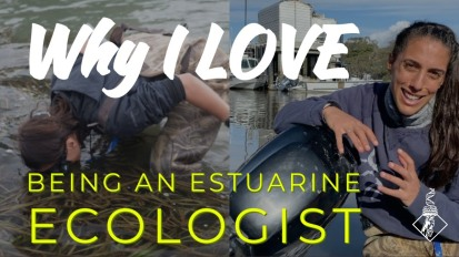 Why I LOVE being an Estuarine Ecologist