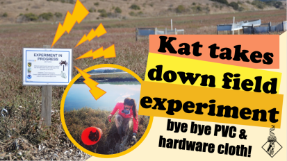 Kat takes down field aexperiment