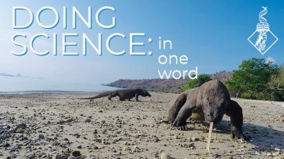 Favorite thing aboutScience-ing?