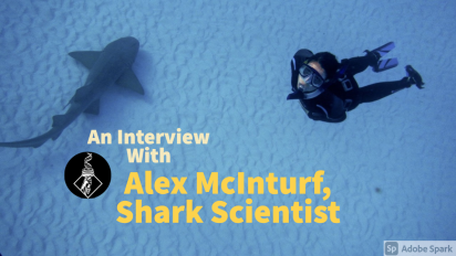 What it's like to ACTUALLY be a sharkscientist